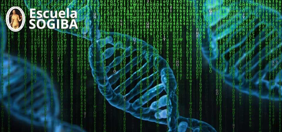 Genética Médica: de los síndromes y las técnicas a lo que debe saber el Tocoginecólogo