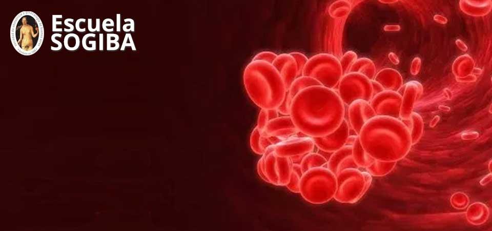 Curso de Aborto recurrente: Trombofilia y más allá