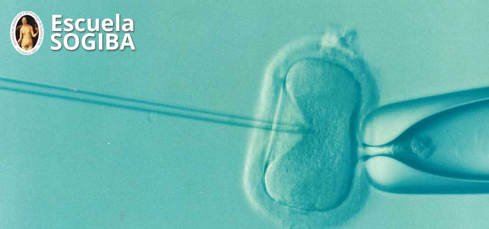 Medicina Reproductiva para el Ginecólogo General: ¿Qué debemos saber?